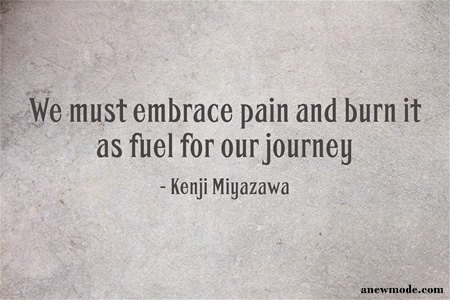 must embrace pain as fuel quote